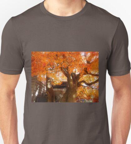 *Blaze of Colour at Trentham* T-Shirt