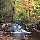 Fall Leaves Meet Waters Meet Point by Gene Walls