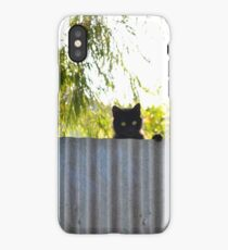 The Rare stray cat iPhone Case