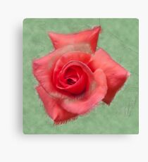 Digitally enhanced orange rose flower with green foliage background  Canvas Print