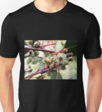 Snow Gum Blossom, Mount Buffalo, Victoria, Australia. T-Shirt