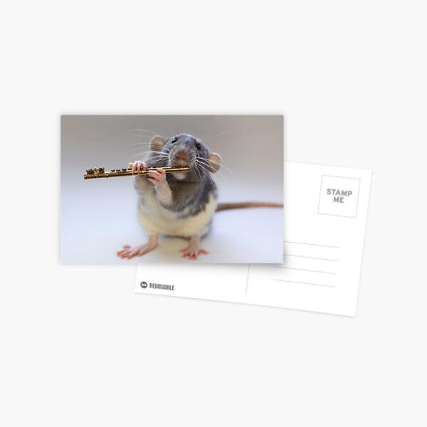 Snuffy Postcard