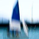 Wind seeking by LouD