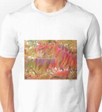 Colour Change T-Shirt