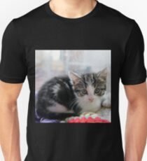 How Much is the Kitty in the Window T-Shirt