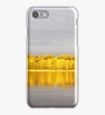 Lemon lanterns iPhone Case/Skin