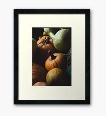 Autumn Harvest Framed Print