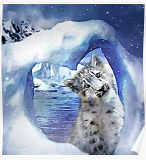 Snow Leopard - Heart Warmer Poster