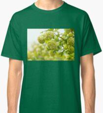 Viburnum opulus Roseum flowers Classic T-Shirt