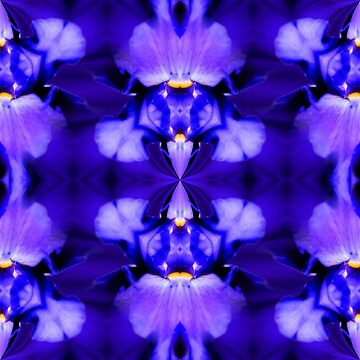 Blue Iris Flower Abstract Design by SmilinEyes