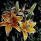 Seize the Daylilies by Monnie Ryan