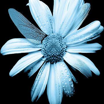 flower by met90