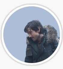 diego luna Sticker