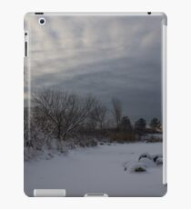 Clearing Snowstorm iPad Case/Skin
