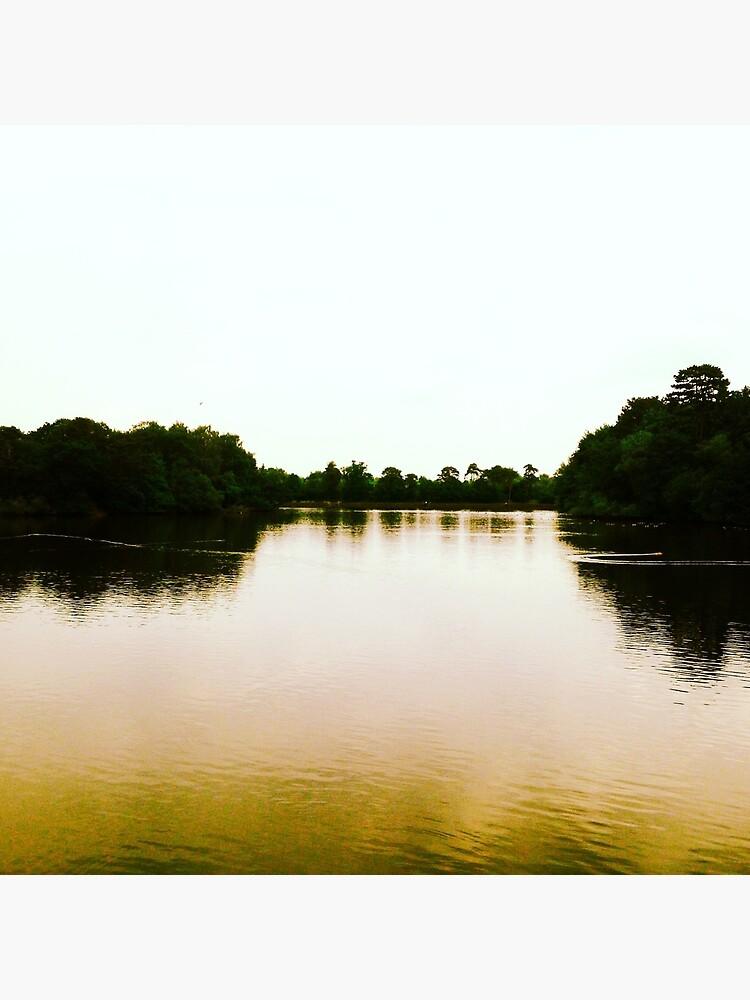Lake by robsteadman