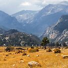 Rocky Mountains National Park by algill