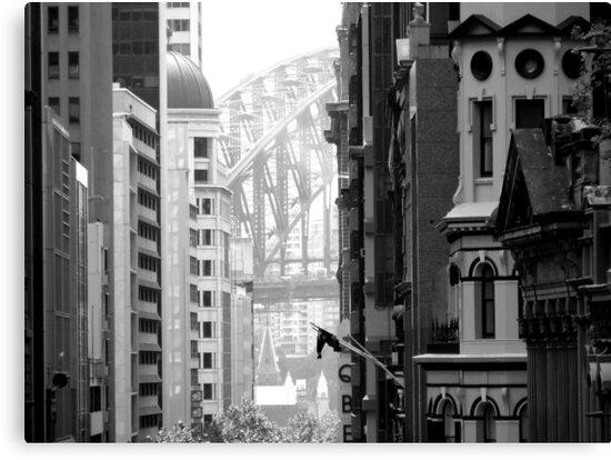 Harbour Bridge View 1 by Paul Todd