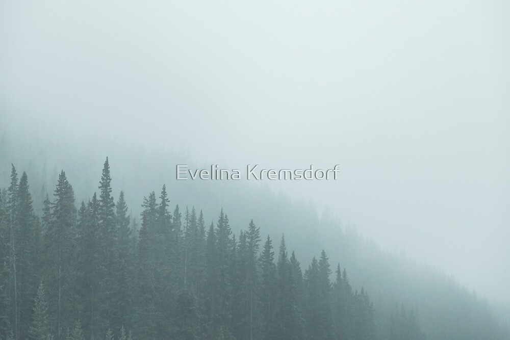 Mist On The Morning Hills by Evelina Kremsdorf