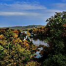 Cherokee Lake Autumn by Rick  Friedle