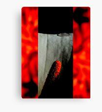 BROKEN/FRAGILE - ORIGINAL PHOTOGRAPHY Canvas Print