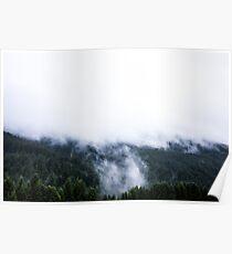 Austria - Feldkirch - fog in the spurce woods Poster