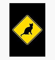 Cat Crossing Traffic Sign - Diamond - Yellow & Black Photographic Print