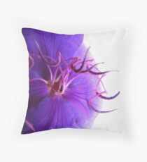 Streamers Throw Pillow