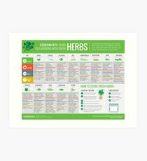 Cook Smarts' Guide to Using Fresh Herbs Art Print
