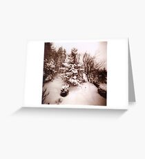 Snowed! Greeting Card