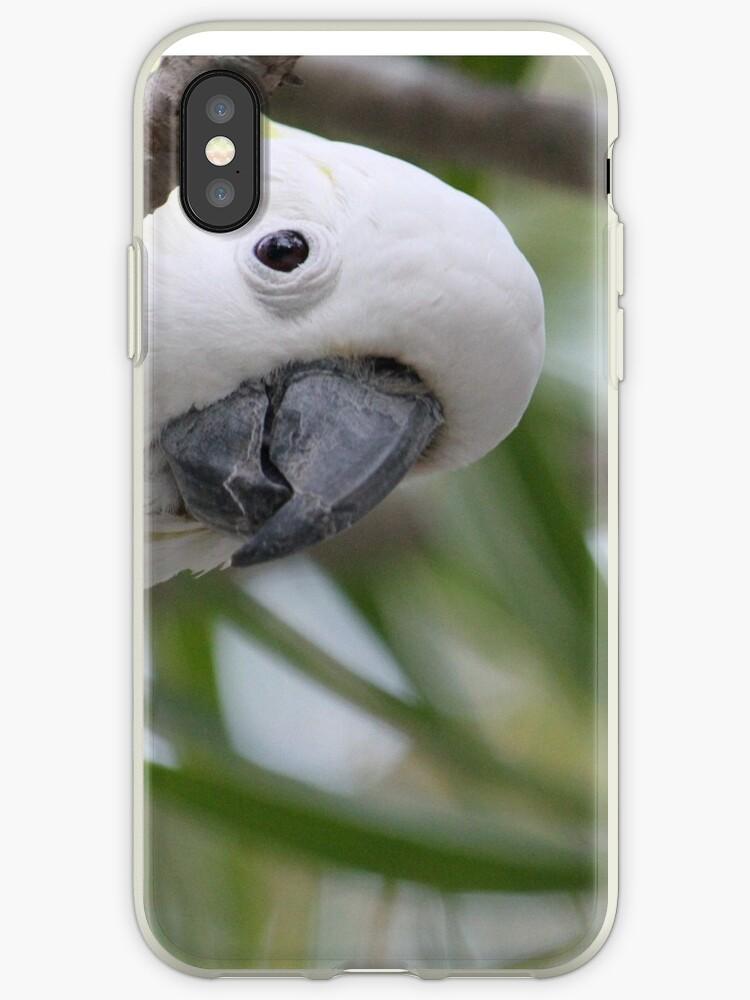 """Hello"" Sulphur-crested Cockatoo by aussiebushstick"