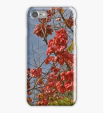 Blooms at this Time, in my Area iPhone Case/Skin