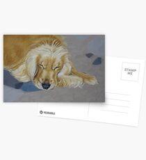 Sleeping Pet Postcards