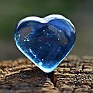 Heart wood by dedakota