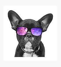 Space Dog - Cute Puppy Sticker Photographic Print