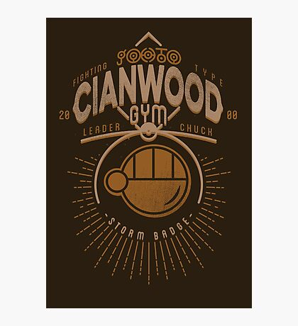 Cianwood Gym Photographic Print