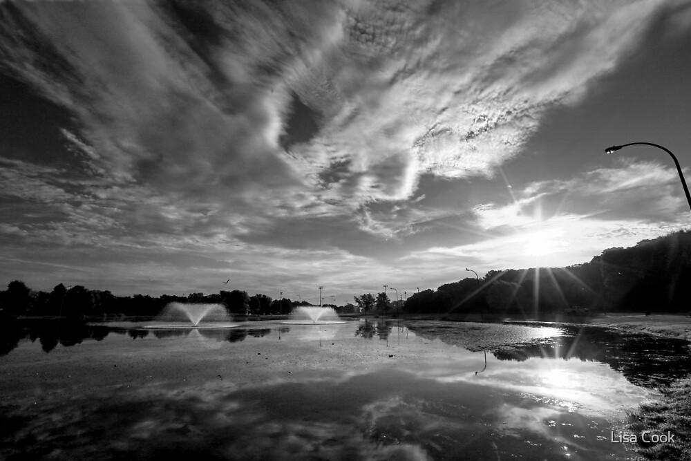 Morning at Lake Riley by Lisa Cook