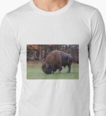 American Field Buffalo grazing Long Sleeve T-Shirt