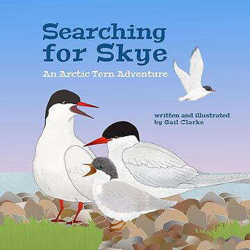Searching for Skye: An Arctic Tern Adventure by dgcphoto