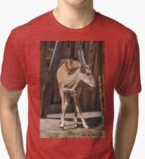 deer in the mountains Tri-blend T-Shirt