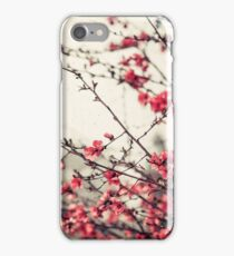Printemps rose iPhone Case/Skin
