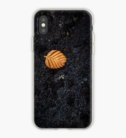 Fallen Fagus, Mt Field iPhone Case