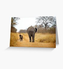 African Elephant (Loxodonta africana) mother and baby Greeting Card