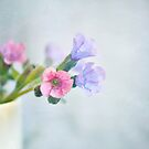 Pale pink and purple flowers by Lyn  Randle