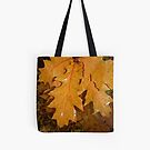 Tote Bag #87 by Shulie1