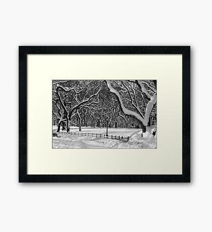 Central Park, NYC Blizzard Framed Print