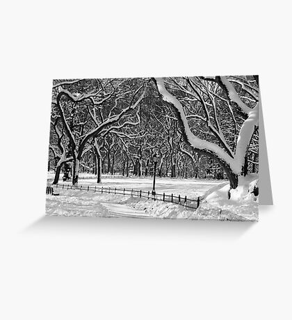 Central Park, NYC Blizzard Greeting Card