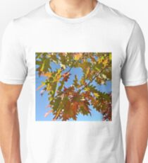 BRIGHTLY COLORED FALL LEAVES Unisex T-Shirt