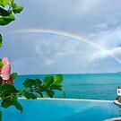 Rainbow over Hibiscus by Christine  Wilson