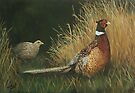Pheasants in Field by Charlotte Yealey