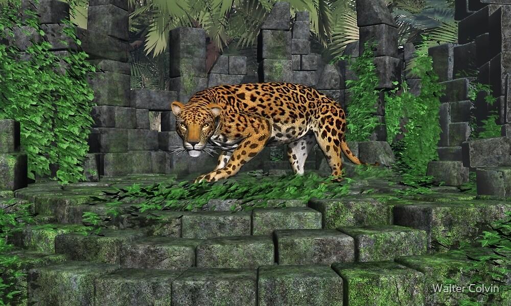 Jungle Ruins Jaguar by Walter Colvin